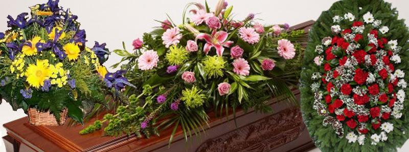 Живые цветы в минске доставка цветов по гродно